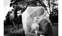 Wedding photography for your big day