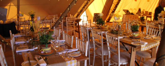 Willow and Fig Events